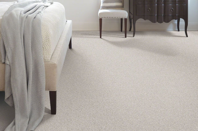 How Long Does it Take for Carpet to Dry? (Complete Guide)