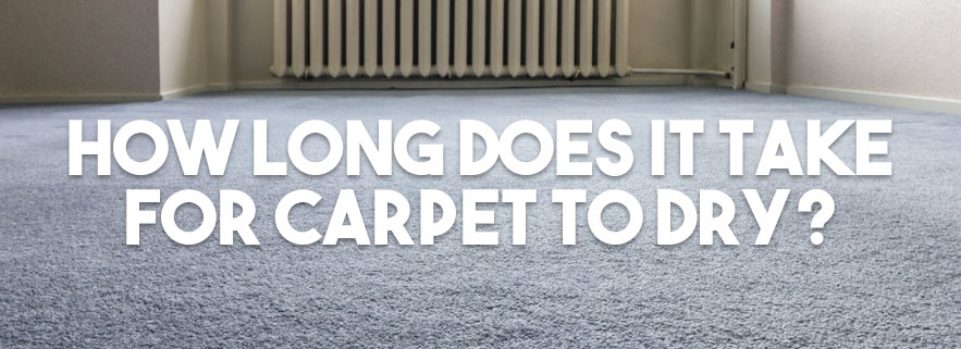 How Long Does It Take For Carpet To Dry Complete Guide